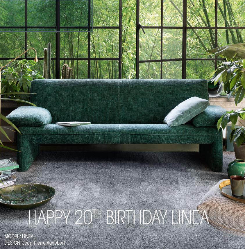 Jori - Verjaardagsactie Linea